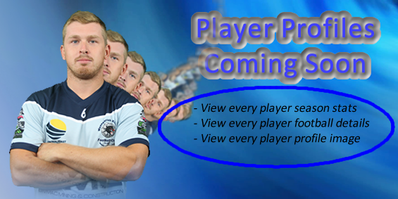Player Profiles Coming Soon