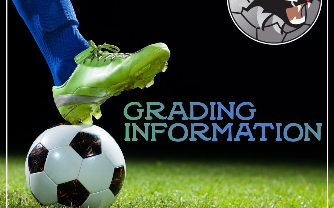 Grading Information 8's to 18's