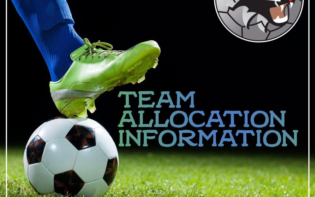 Team Allocation Information